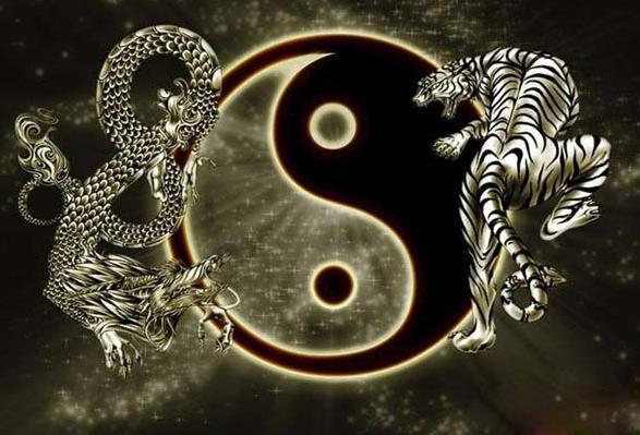 东面是青龙方,西面是白虎方,白虎抬头会有什么后果?
