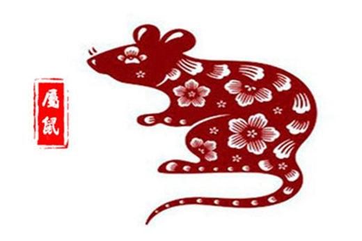 2022年十二生肖属鼠运势及运程详解-属鼠人的2022年每月运势分析